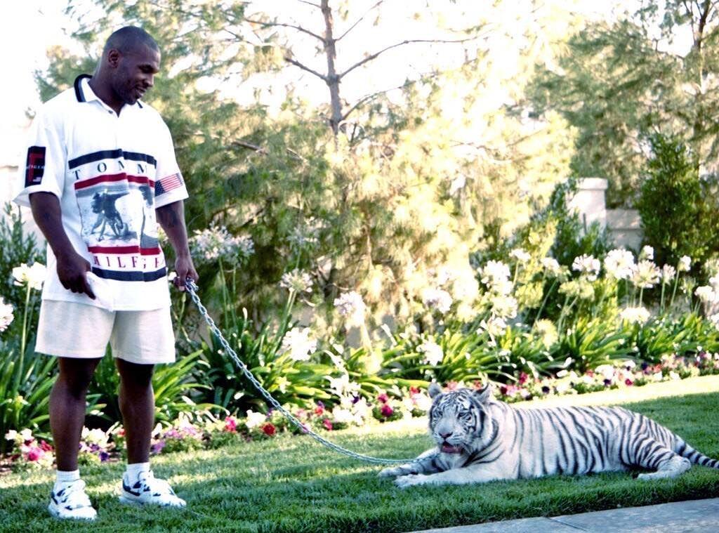 1 Alasan Mulia Mike Tyson Naik Ring Tinju Lagi Mike Tyson - Viralnesia