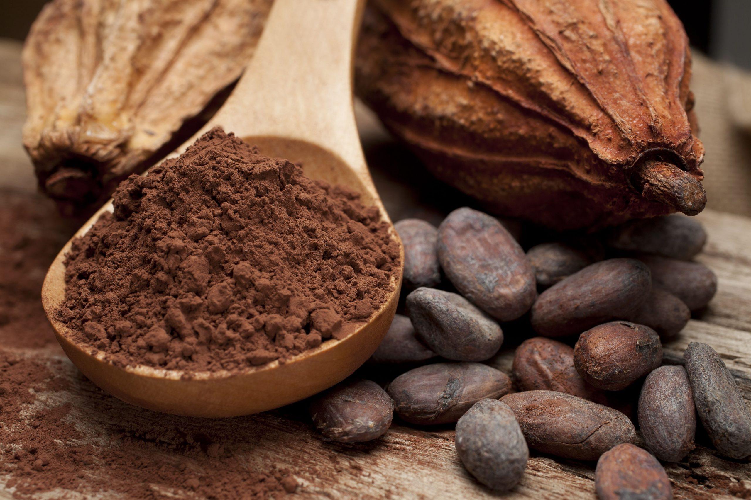 Manfaat Cokelat dan cara Konsumsinya